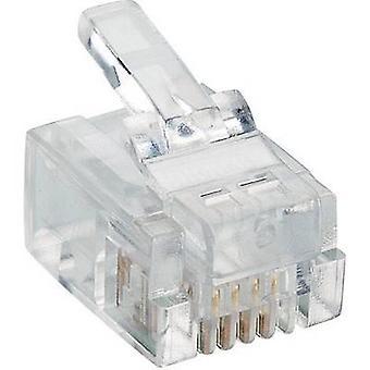 Lumberg P 127 modulkontakt 6p4c RJ11 kontakten, straight Transparent