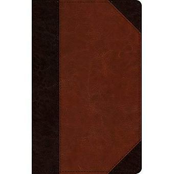 ESV Large Print Personal Size Bible (Trutone, Brown/Cordovan, Portfolio Design)